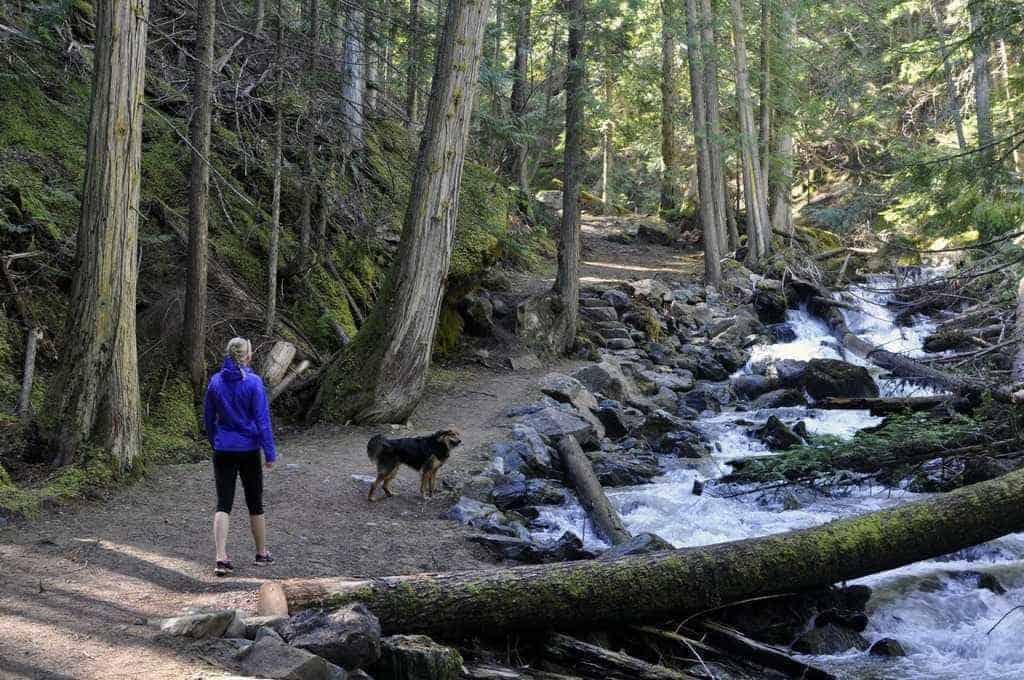 Upper Flume Trail