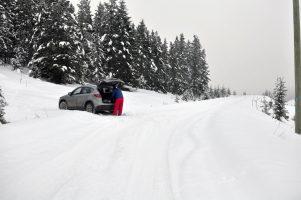 Timber Tower & Loop Snowshoe