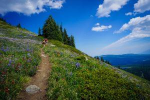 Tod Lake & Summit Hike