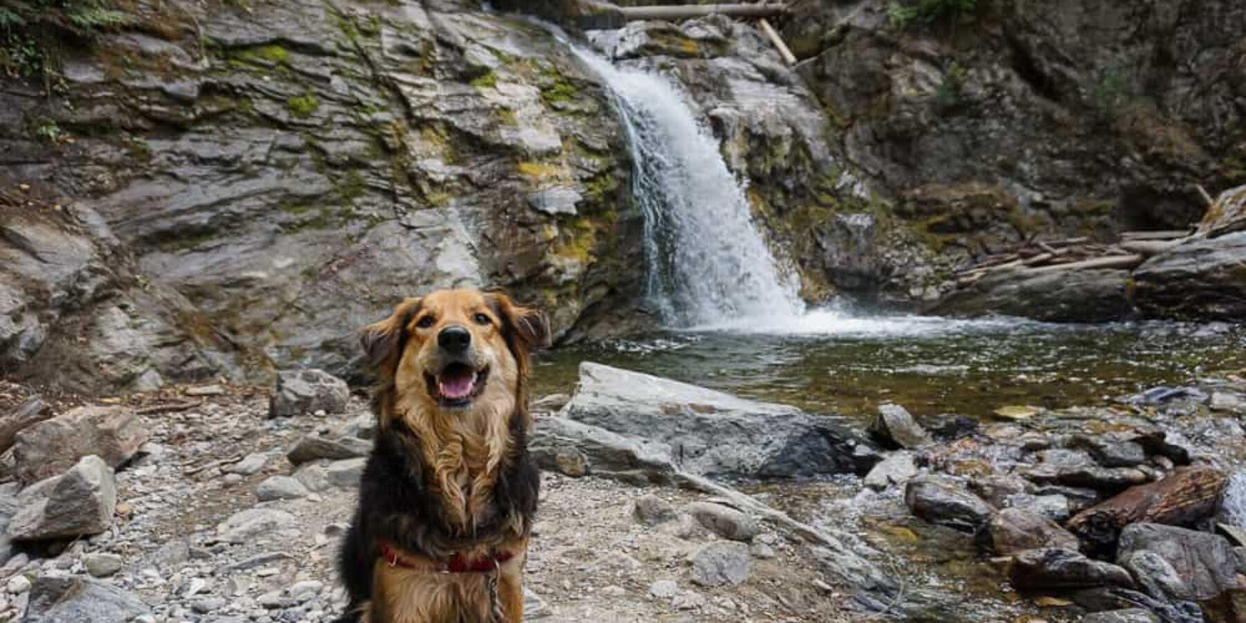 Chase Creek Falls