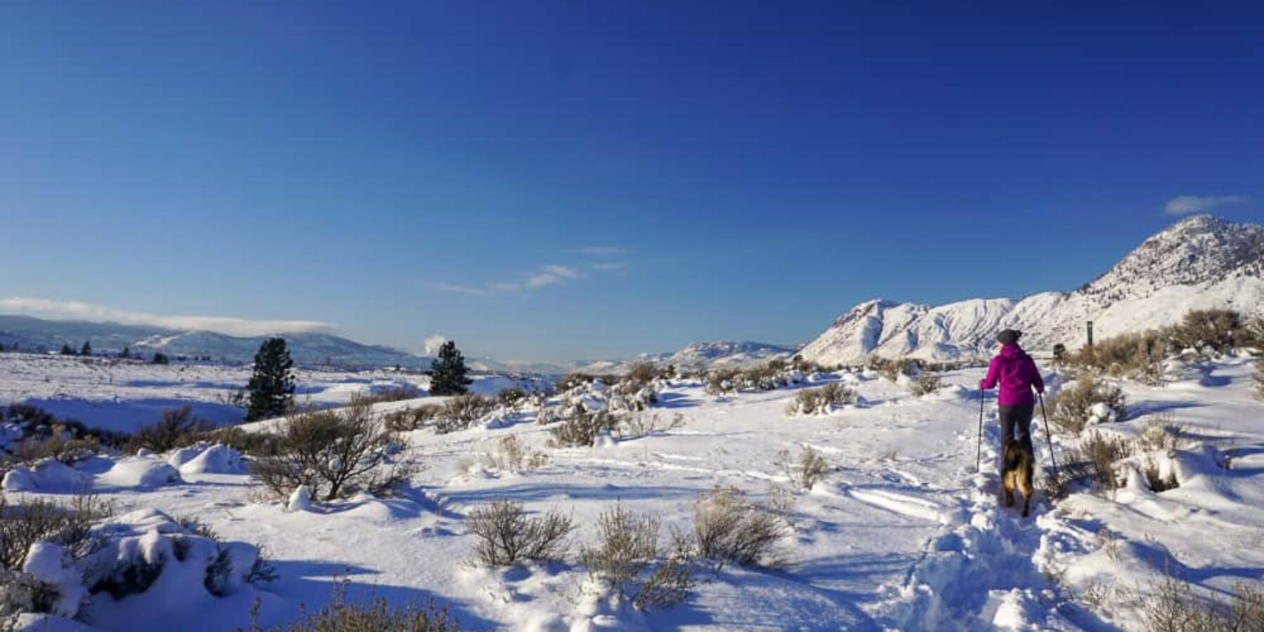 Where to Snowshoe in Kamloops?