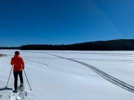 Lac Le Jeune Snowshoe