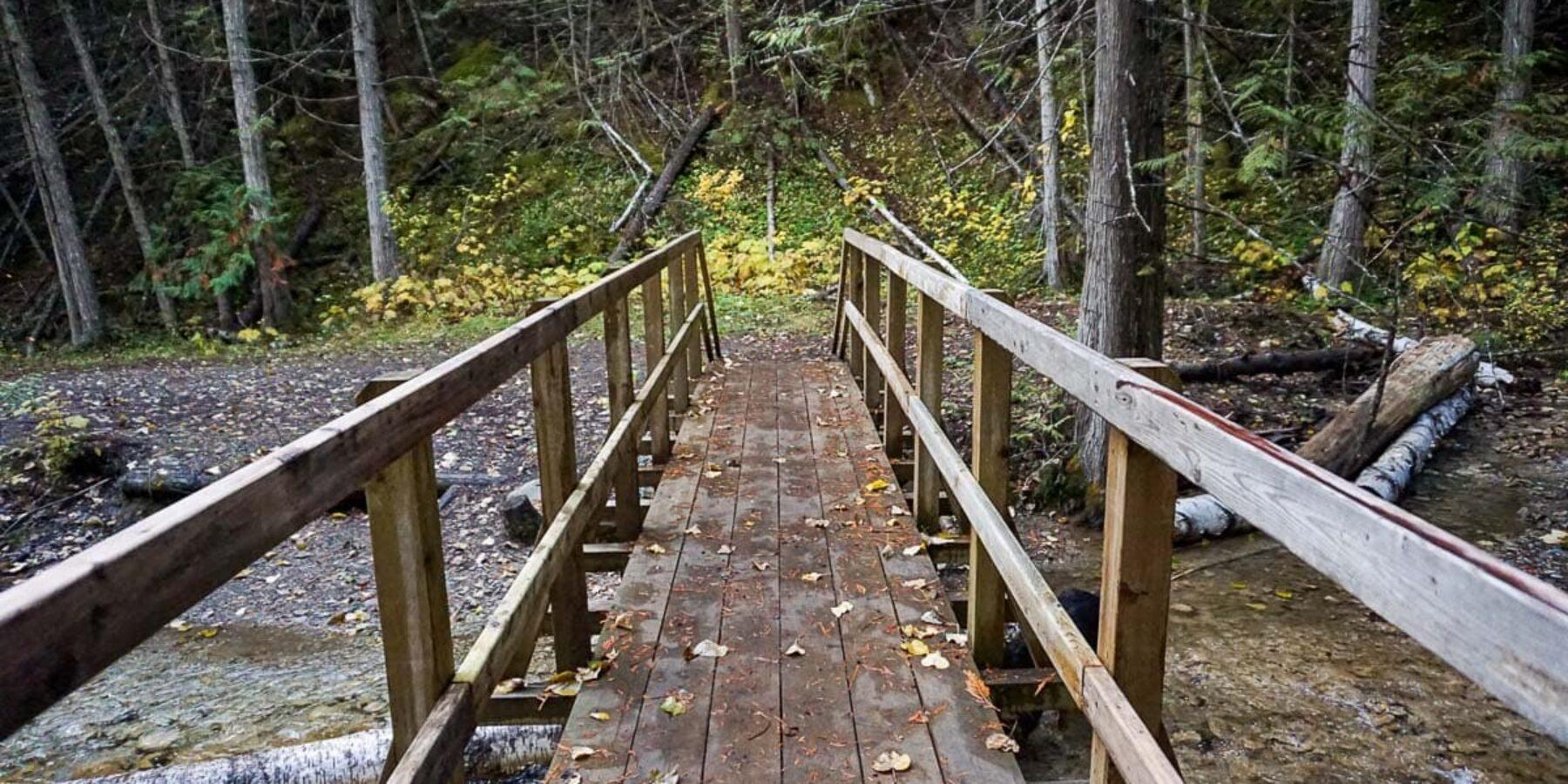 Margaret Falls Upper Canyon Loop Trail